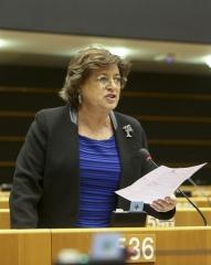 Terrorismo: UE precisa de promover política externa de resolução de conflitos e inclusão social