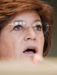 Ana Gomes chefia delegação do Parlamento Europeu a Malta