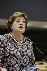 Política comum de defesa e segurança: Parlamento Europeu tem assumir supervisão e controlo democrático