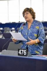 """Ana Gomes: """"Precisamos de harmonização e transparência fiscal na UE"""""""
