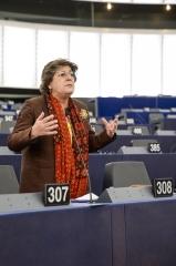 Ana Gomes defende estratégia europeia comum de defesa e segurança