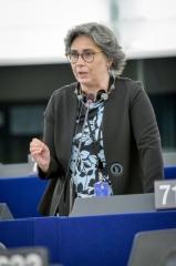 S&D candidata ativistas ambientais brasileiros ao Prémio Sakharov