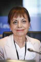 """Deputados europeus """"muito preocupados"""" com instabilidade na Bolívia"""