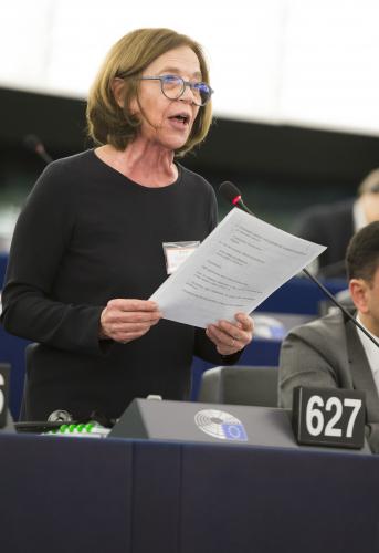 Solidariedade e cooperação para salvar o projeto europeu