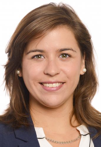 Sara Cerdas defende apoios para a transforma��o sustent�vel dos transportes p�blicos